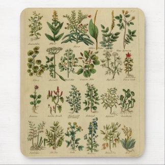 Vintage Herbal Mouse Pad