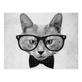 Vintage hipster cat postcard