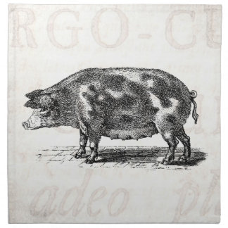 Vintage Hog Illustration on Old Paper 1800s Pig Napkin