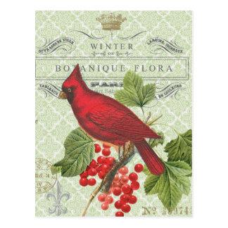 Vintage Holiday-Winter red cardinal-postcard Postcard