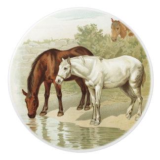 Vintage home decor horse lovers knob