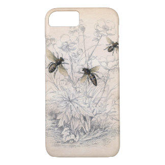 Vintage Honey Bee Art iPhone 7 Case
