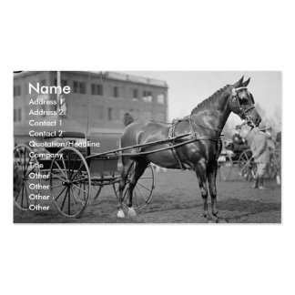 Vintage Horse Show Pack Of Standard Business Cards