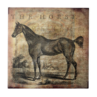 Vintage Horse Thoroughbred and Arabian Horses Small Square Tile