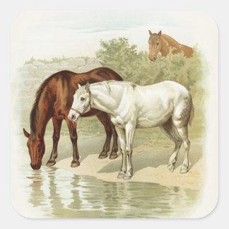 Vintage horses any purpose sticker