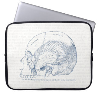 Vintage Human Anatomy Drawing Temporal Muscle Blue Computer Sleeve