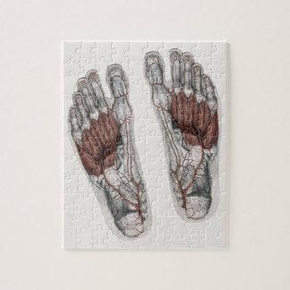 Vintage Human Anatomy Footprint Podiatry Foot Jigsaw Puzzle