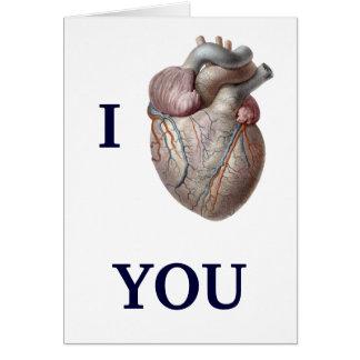 Vintage Human Anatomy, I Heart Love You Card