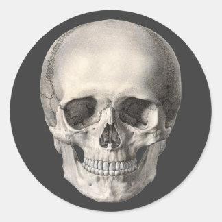 Vintage Human Anatomy Skull, Halloween Skeleton Classic Round Sticker