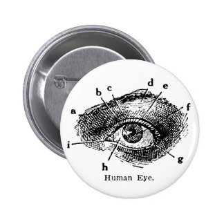 Vintage Human Eye Diagram 6 Cm Round Badge