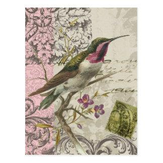 Vintage Hummingbird...postcard Postcard