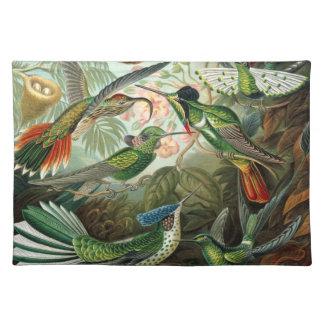 Vintage hummingbirds scientific illustration placemat