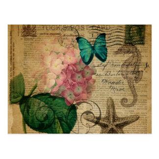 vintage hydrangea seashell bontanical art fashion postcard