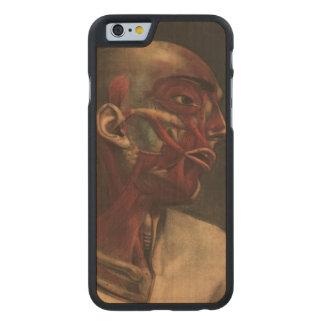 Vintage Illustration Head, Neck, and Shoulders Carved® Maple iPhone 6 Slim Case