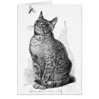 Vintage illustration of Cat watching an Insect Greeting Card