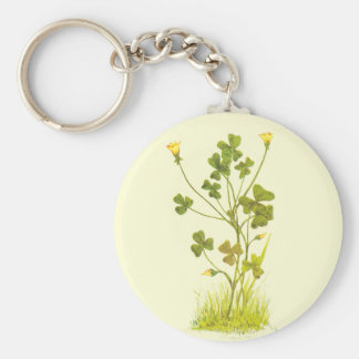 Vintage Illustration of the Yellow Wood-Sorrel Basic Round Button Key Ring