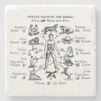 Vintage Illustration Twelve Signs of the Zodiac Stone Coaster