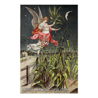 Vintage Image From 1886 Seed Catalogue Poster