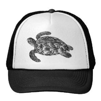Vintage Imbricated Sea Turtle - Turtles Template Mesh Hats