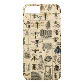 Vintage Insect Bug Chart Phone Case