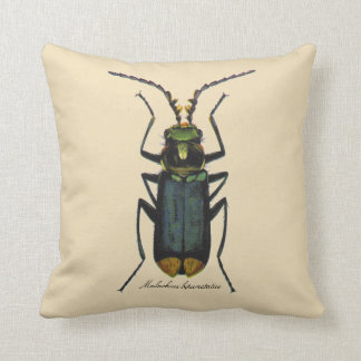 Vintage Insects Entomology Malachite Beetle Rever. Cushions