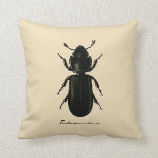 Vintage Insects Entomology Reversible Cotton Throw Pillows