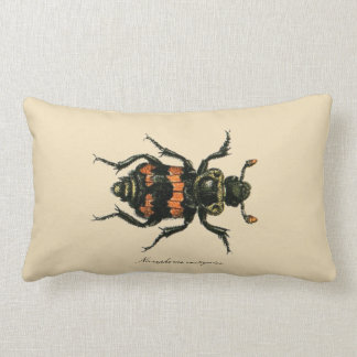 Vintage Insects Entomology Reversible Lumbar Throw Cushions