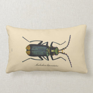 Vintage Insects Entomology Reversible Polyester Pillow