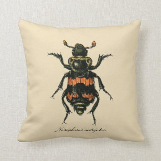 Vintage Insects Sexton Beetle Entomology Revers. Cushions