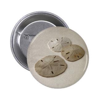 Vintage Inspired Sand Dollars Pins