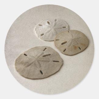 Vintage Inspired Sand Dollars Round Sticker
