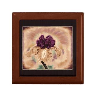 Vintage Iris treasure box