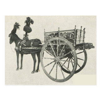 Vintage Italy, Sicily,  Traditional painted cart Postcard