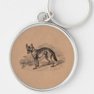Vintage Jackal Dog 1800s Jackals Illustration Key Ring