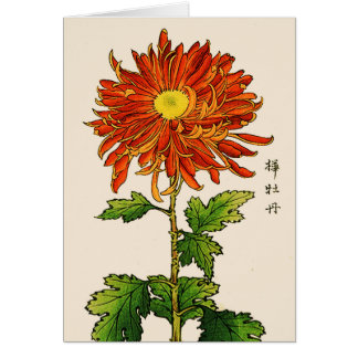 Vintage Japanese Chrysanthemum. Orange and Gold Card