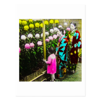 Vintage Japanese Family at Chrysanthemum Show Postcard