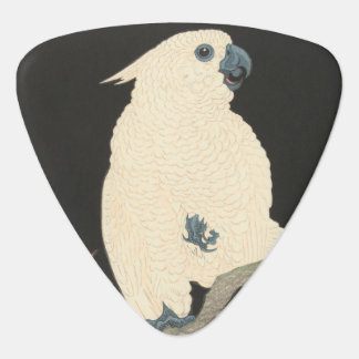 Vintage Japanese Fine Art | Cockatoo Plectrum