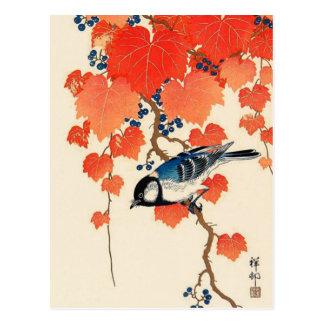 Vintage Japanese Jay Bird and Autumn Grapevine Postcard