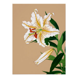 Vintage Japanese Liliy. White, Green and Beige n Poster
