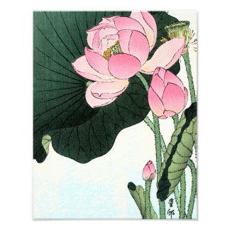 Vintage Japanese Lotus Flower Photo Enlargement