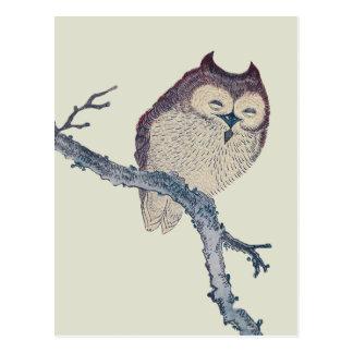 Vintage Japanese Sleeping Owl Post Cards