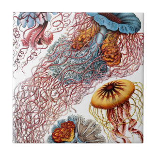 Vintage Jellyfish by Ernst Haeckel, Discomedusae Ceramic Tile