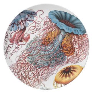 Vintage Jellyfish Marine Life Plate