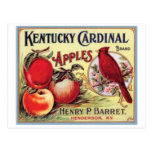 Vintage Kentucky Cardinal Apples, Henry P Barret, Postcard