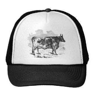 Vintage Kerry Cow Personalized Bull Illustration Cap