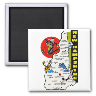 Vintage Kitsch New Hampshire State Travel Decal Fridge Magnets