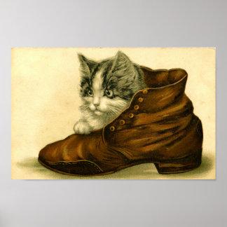 Vintage Kitten in Shoe Poster