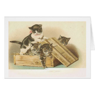 Vintage Kittens Playing in a Wooden Crate, Card