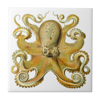 Vintage Kraken, Giant Octopus by Ernst Haeckel Ceramic Tile