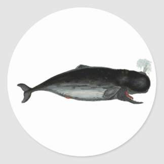 Vintage Laughing Whale Round Sticker